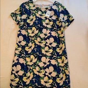 Jcrew factory Gallery Shift dress